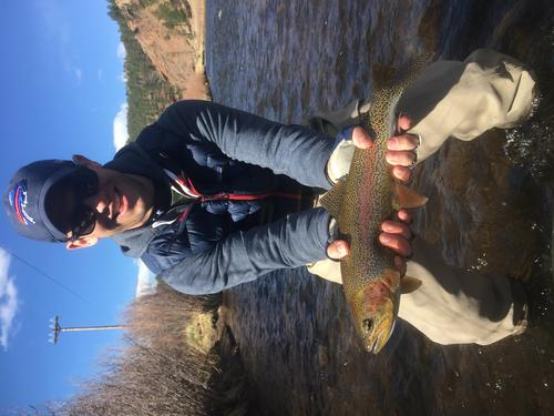 Colorado Trout Fishing