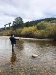 Fly Fishing Photo 24 - Private Fishing Lesson Boulder River Ranch, Sat 10/05/2019