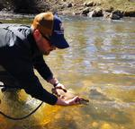 Fly Fishing Trip Photo 4 - Fly Fishing, Sun 07/07/2019