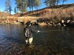 Fly Fishing Trip Photo 1 - Fly Fishing, Sun 12/11/2016