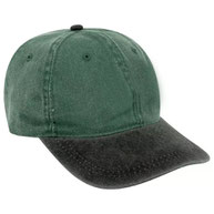 Youth 6 Panel Low Profile Dad Hat