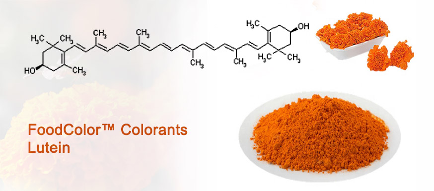 FoodColor™️ Colorants Lutein