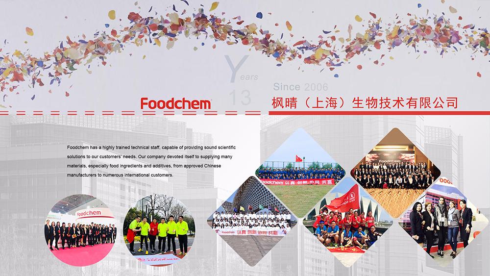 Foodchem International Corporation