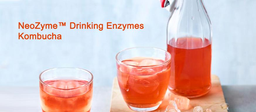 NeoZyme™️ Drinking Enzymes Kombucha