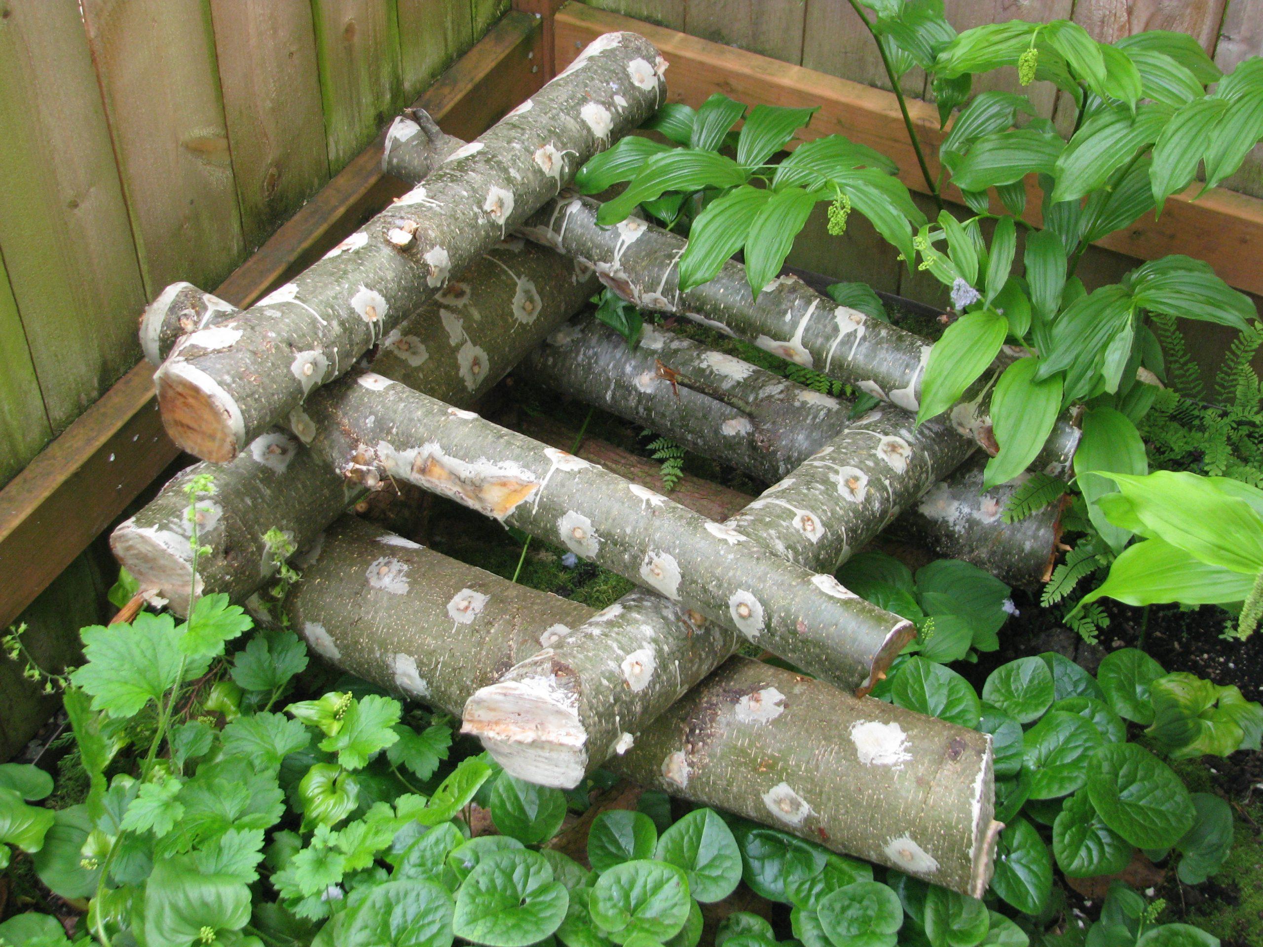 A pile of freshly plugged mushroom growing logs