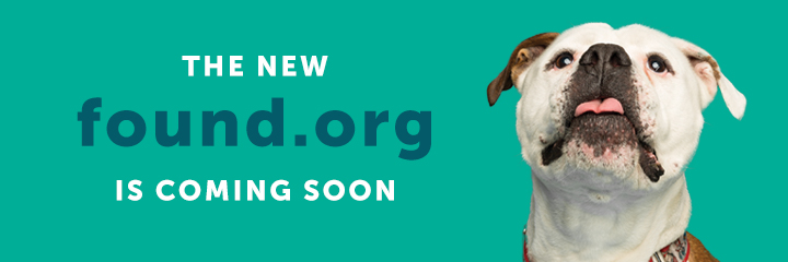 The new Found.org is coming