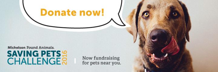 Saving Pets Challenge 2016 banner.