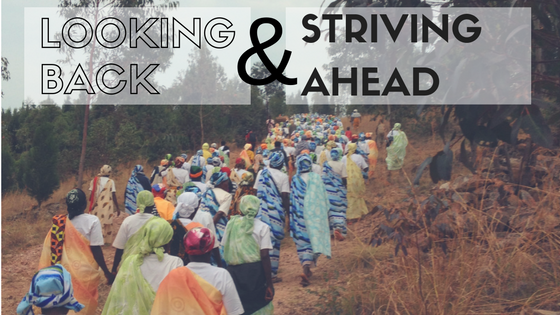 looking-back-striving-ahead-blog-image