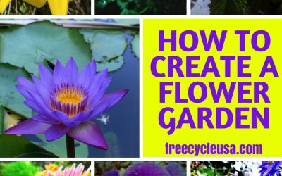 How To Create Your Own Flower Garden