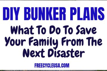 Bunker Survival Plans