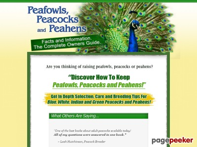 Peacocks peafowls and peahens – Home