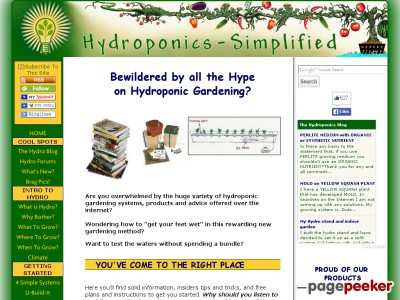 HYDROPONIC PLANS – DO IT RIGHT THE FIRST TIME
