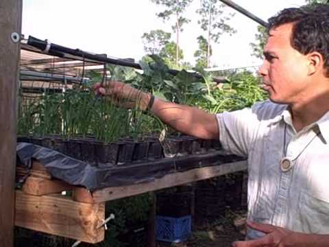 Do-it-yourself Handmade Hydroponic Vertical Garden and City Farm in South Florida