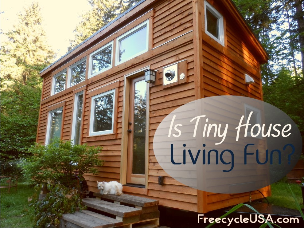 why tiny house living is fun freecycle usa. Black Bedroom Furniture Sets. Home Design Ideas