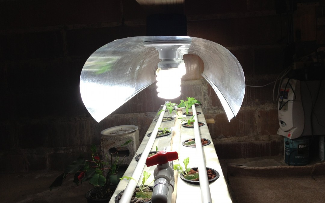 DIY Drip Hydroponics Lighting from Freecycle Materials