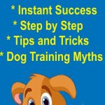 Doggy Dans Online Dog Training