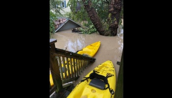 "Donate to ""Guerneville Flood Recovery"""