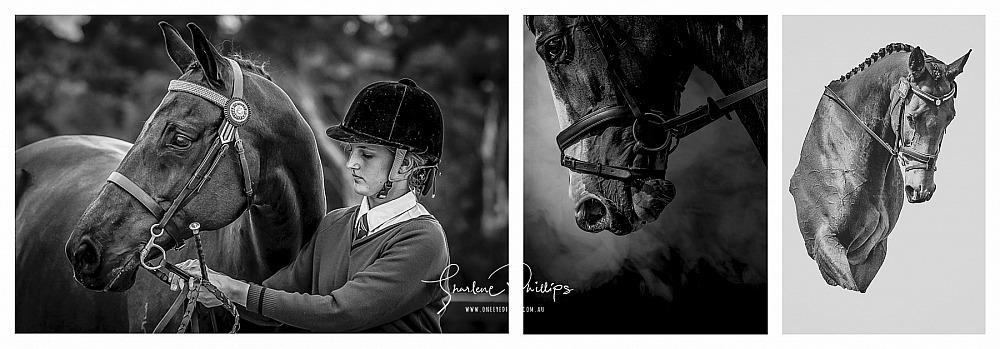 Equine Event Photography Packages