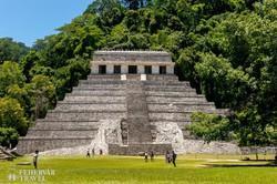 Palenque – maja romok az esőerdőben – részlet