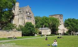a Yale Egyetem történelmi épületei – részlet