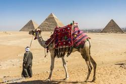 teve a Gízai Piramisoknál