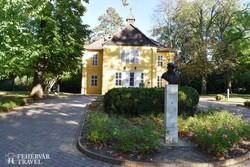 Kaposvár – a Rippl-Rónai villa