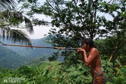 malajziai bennszülött bevetésen