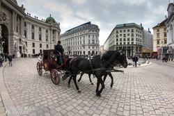 fiáker a Hofburg épülete előtt