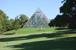 Sydney híres botanikus kertje – részlet