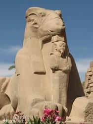 kosfejű szfinx Karnakban