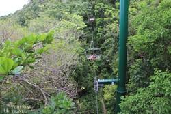 libegőzés az őserdő felett Ocho Rios-nál