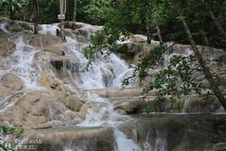 a Dunn folyó vízesései – részlet
