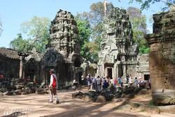 a Ta Prohm romterület Angkorban – részlet
