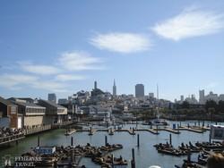 San Francisco – fókák és felhőkarcolók
