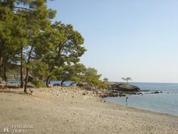Phaselis tengerpartja