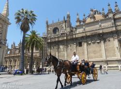 konflissal a sevillai katedrális előtti téren
