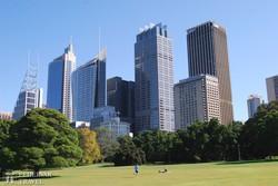 Sydney – a belváros a botanikus kert felől