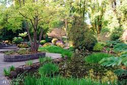 Melbourne egyik legszebb parkja, a Fitzroy Gardens