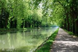 a Canal du Midi partján
