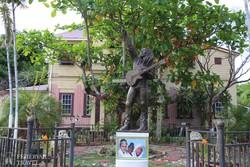 Kingston: a Bob Marley Múzeum a kert felől