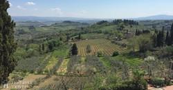 toszkán táj San Gimignano környékén