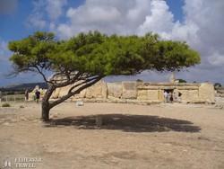 a Hagar Qim őskori templom