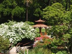 japán kert a Powerscourt parkban