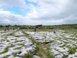 Burren karsztvidéke