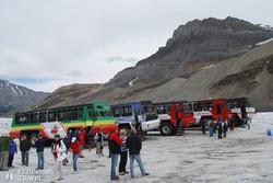 hóbuszok az Athabasca-gleccseren