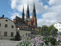 az uppsalai székesegyház