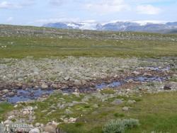 holdbéli táj a Hardanger-fennsíkon