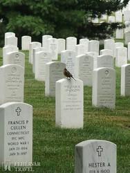az Arlington Nemzeti Temető Washingtonban – részlet