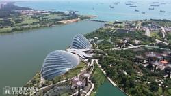 Szingapúr lenyűgöző ökoturisztikai parkja – a Gardens by the Bay