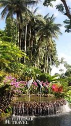 a szingapúri Nemzeti Orchidea Kert egy részlete